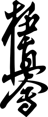 Kyokushinkai – Das Karate im MTV