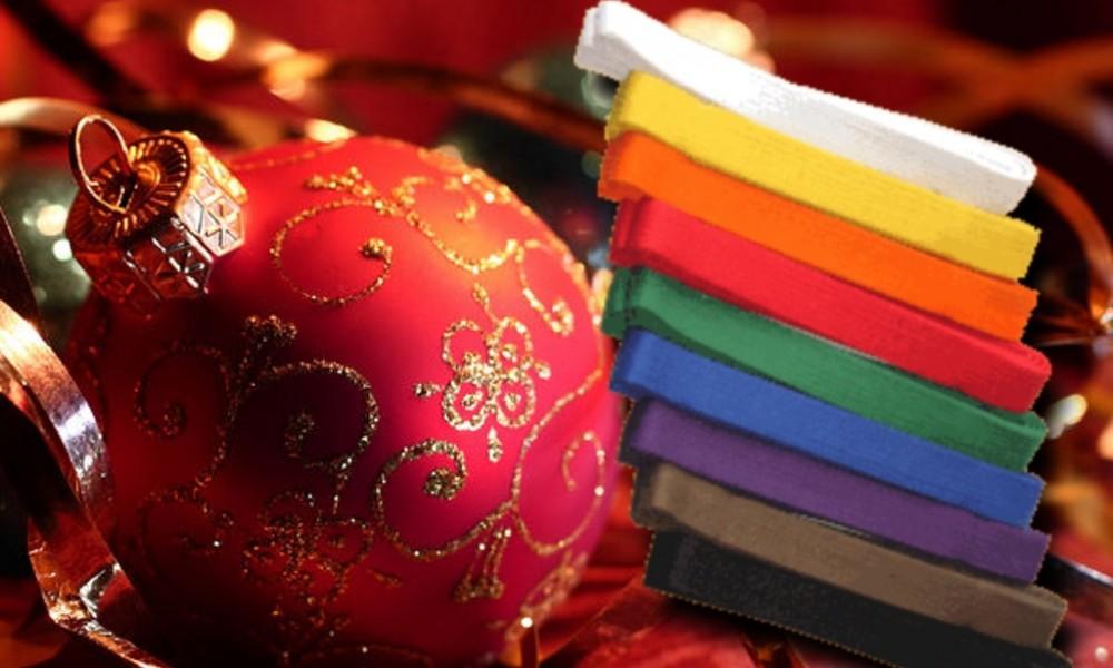 Termine Weihnachtsfeier und Gürtelprüfung